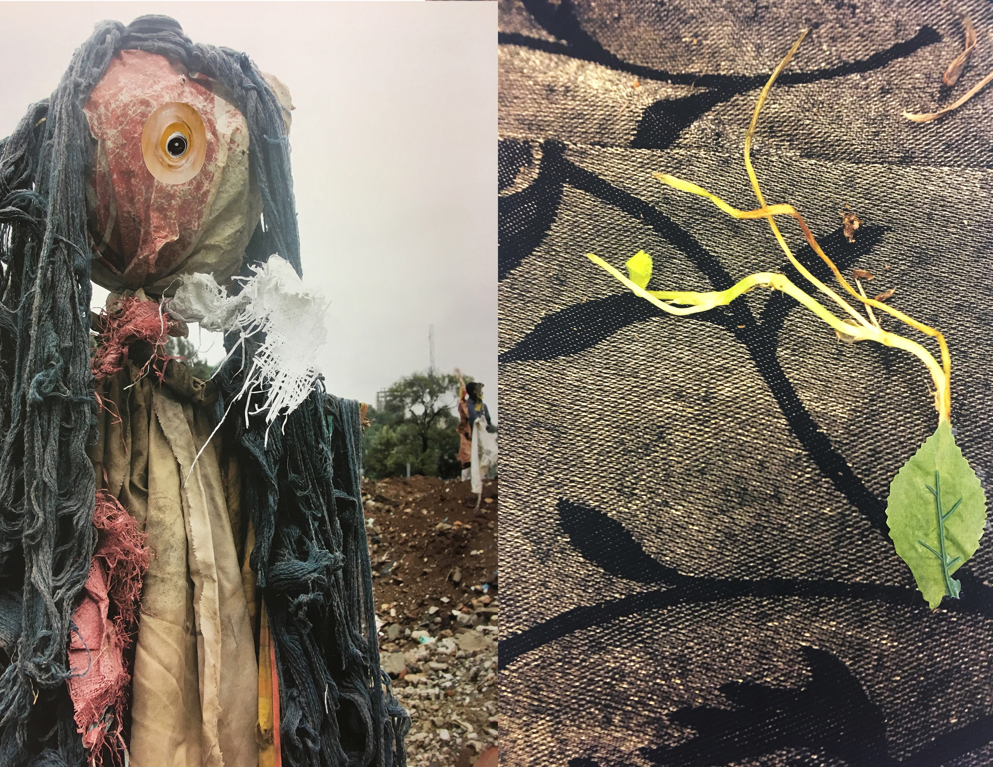 Dymph de Wild, Spirit 1 (photograph of a ragged sculpted scarecrow figure at the edge of a plowed field); Corinne Diop, Leaf/Shoot (photograph of a green shoot and leaf and its shadow against a rock)