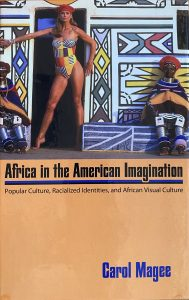 Book cover for Africa in the American Imagination