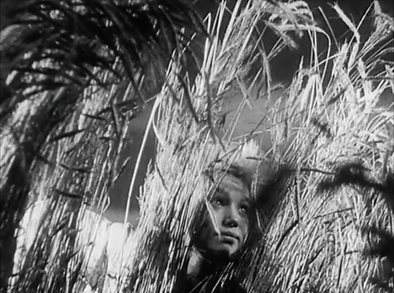 Image still from Sergei Eisenstein's Bezhin Meadow (1937)