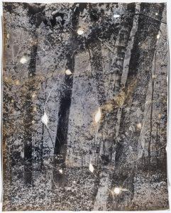 Gesche Würfel Battle Park, NC (3), version 1, 2019-2020 Solarized and roasted gelatin silver print on glossy RC paper 14h x 11w in 35.56h x 27.94w cm